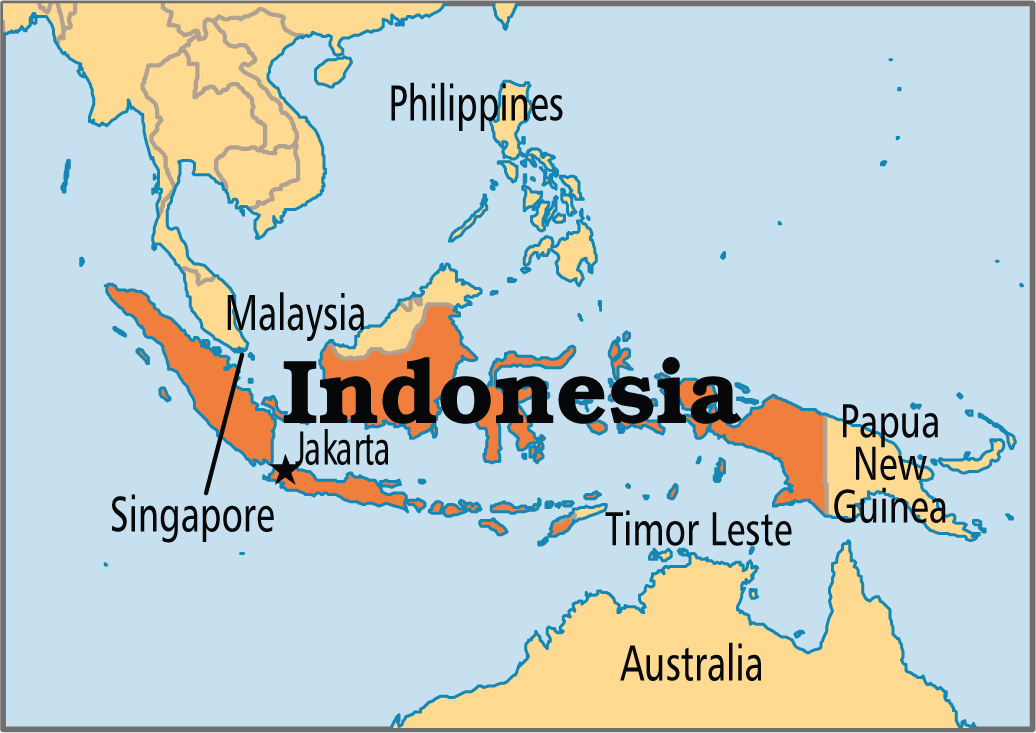 Indonesia Restricts Domestic Flights For Foreign Registered Aircraft