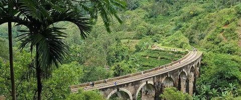 Business Operations To Sri Lanka