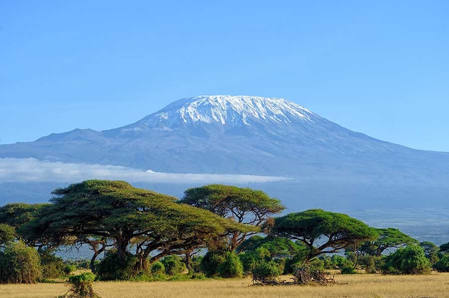 Kilimanjaro - My Climb For Aviation Sustainability